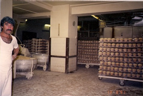 alagutkemence1993